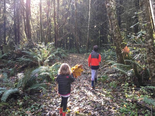 kids-hiking-forest-allison-sutcliffe