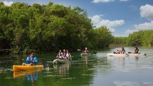 mayakoba-kayaking