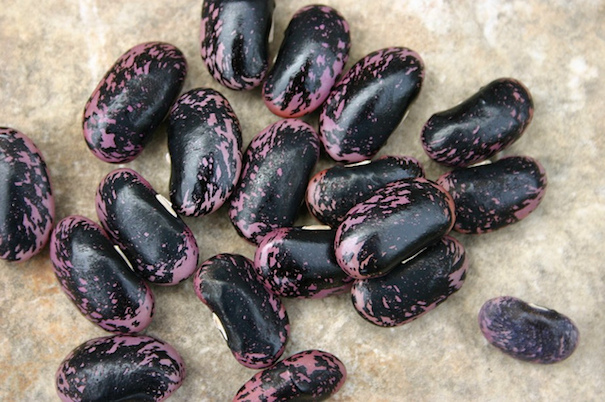 black-beans-rhonda-fleming-hayes-flickr