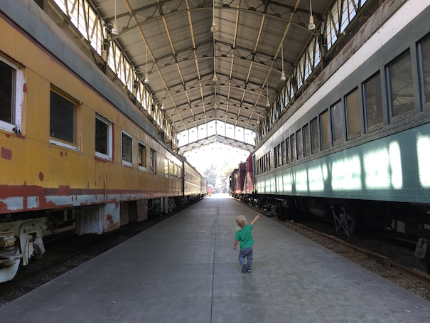groundhog-trains