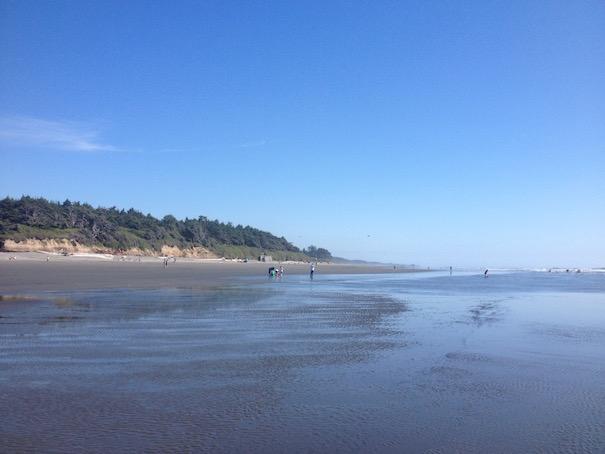 kalaloch-beach-coastline-allison-sutcliffe