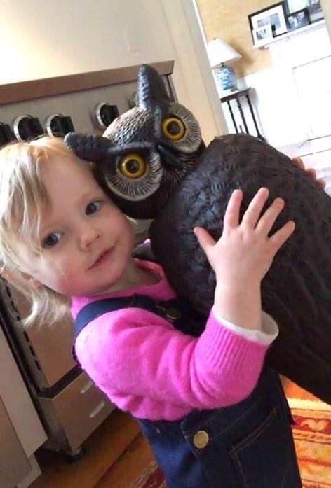 owl-bff