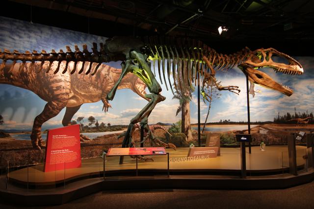 ultimate-dinosaur-exhibit