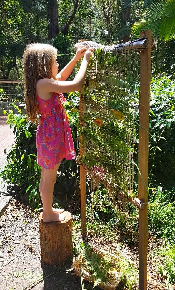 https://redtri.com/wp-content/uploads/2017/09/weaving-natural-materials-kids.jpg