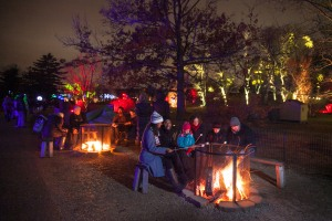Morton Arboretum Illuminations 2014
