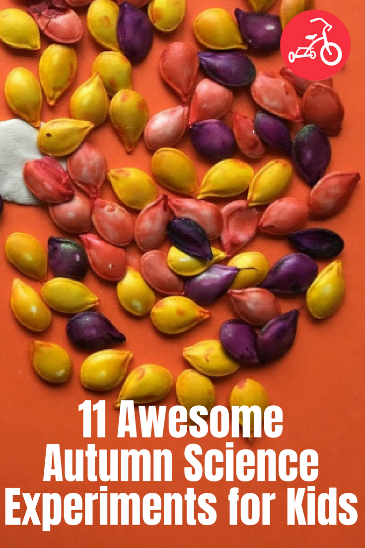 11 Awesome Autumn Science Experiments for Kids