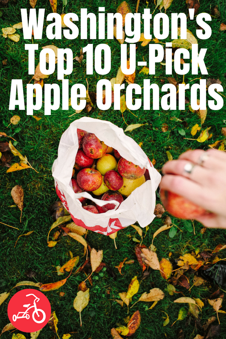 Washington's Top 10 U-Pick Apple Orchards
