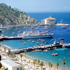 fun things to do in Catalina with kids