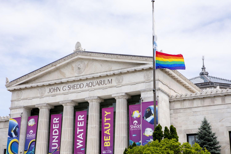 Shedd Aquarium Pride Event