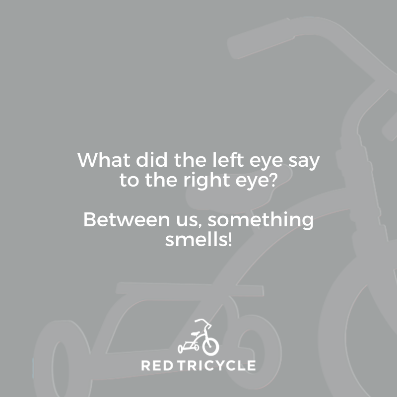 What did the left eye say to the right eye? Between us, something smells! jokes for kids