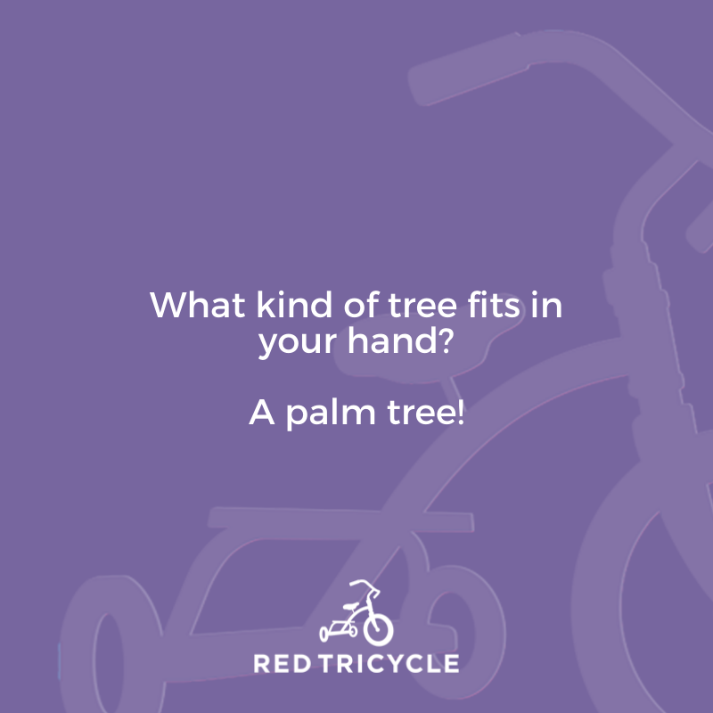 What kind of tree fits in your hand? A palm tree! funny jokes for kids