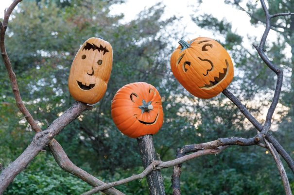Kids Halloween Events Nyc 2020 These Events Will Help You Save Halloween 2020