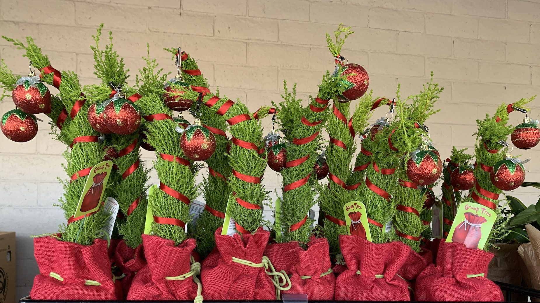 Trader Joe S Grinch Inspired Trees Are Back They Ll Make Your Heart Grow 3 Sizes