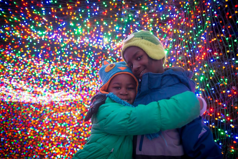 Washington-Park-Zoo-Lights-yelp
