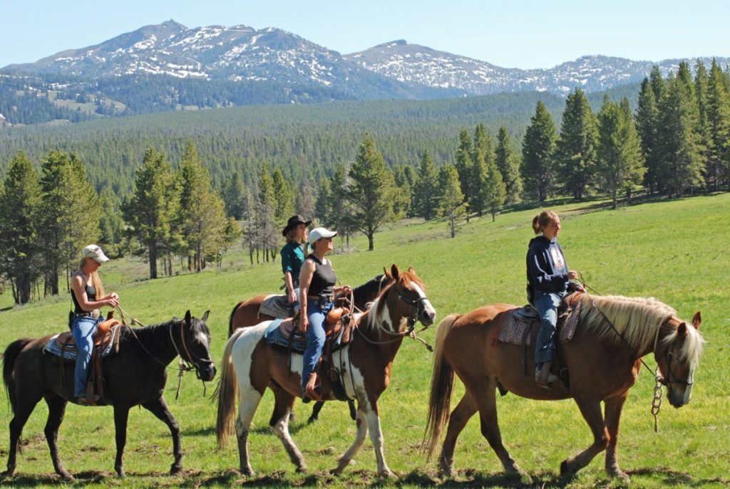 Horseback riding - Yellowstone