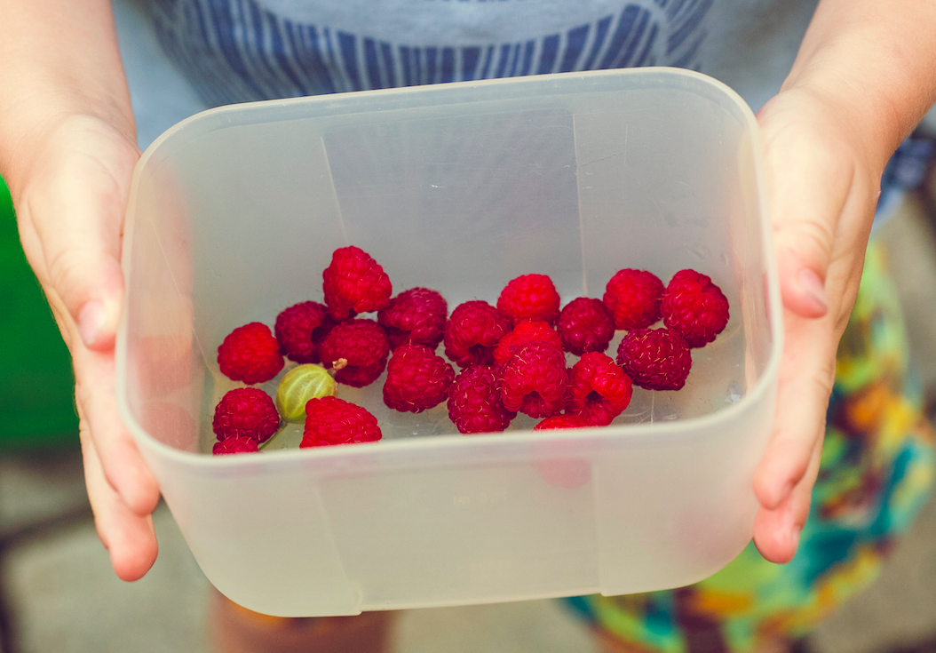 3 Ways to Instill Healthy Habits in Our Kids