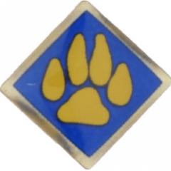 Cub Scout Recall