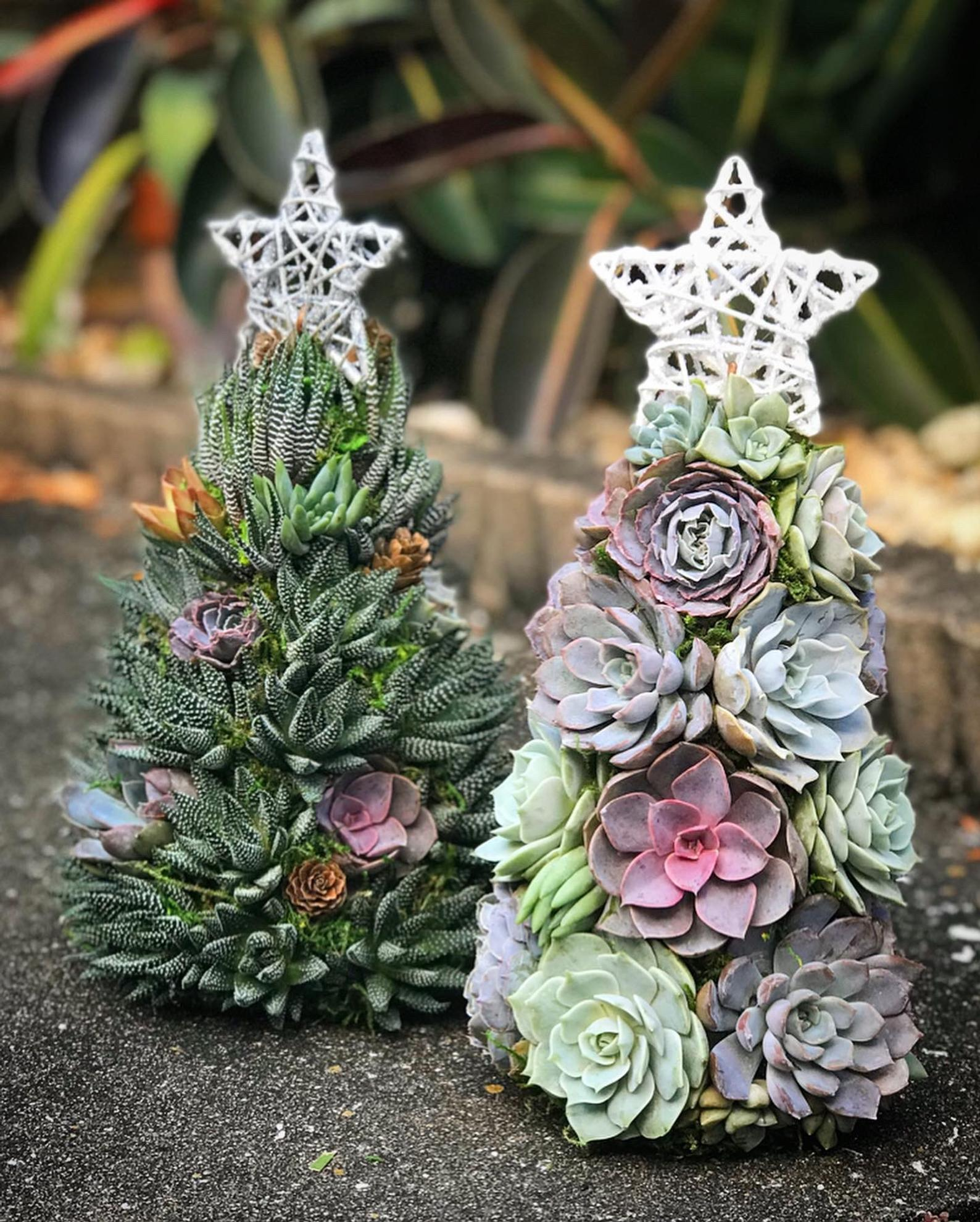 Succulent Christmas Trees Will Be Your New Holiday Tradition