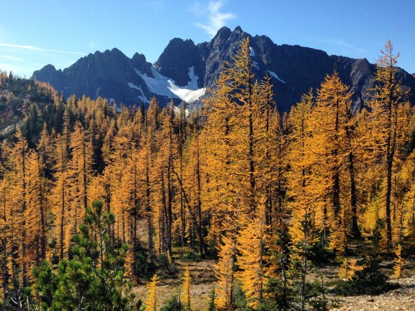 9 Scenic Drives to See Spectacular Fall Colors