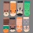Teddy & Bear Socks