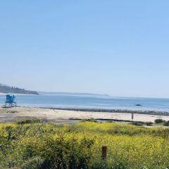 leo carillo state beach california los ángeles