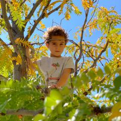 kid in a tree
